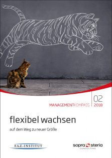Managementkompass-flexibel-wachsen_2018_978-3-945999-65-3